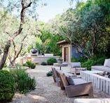 garden - insipirations
