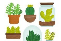 illustrations - plant & jar