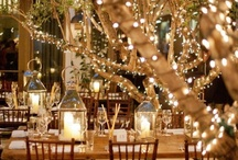 Wedding ideas! / by erin