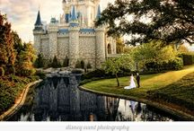 The Disney wedding / Every one is allowed to decorate just comment and I will allow you to! / by Brooke Cranwell