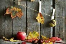 Autumn|秋