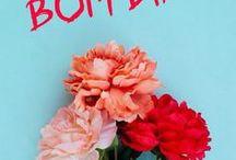 ♥  FLOWERS & PLANTS