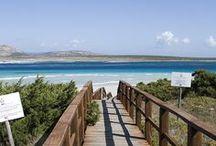 My Island Sardinia