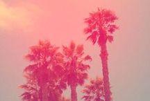 Summer Kind of Wonderful / by Edie Hernandez