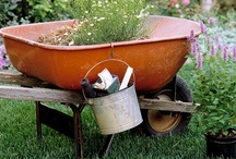 The Organized Gardener / Green thumb? From the lawn to the rose bed, pick up tips to stay organized while gardening.