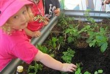 GARDENING / Great Ideas to get the children involved in Gardening