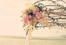 ♡ Wedding Ceremony