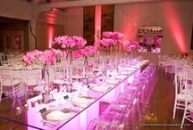 SA Event Decor , Pink and Yellow Event Decor
