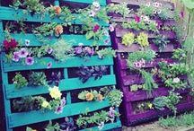 Gardens story / Love it!!!!