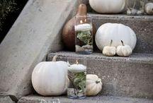 Herbstdeko für gemütliche Stunden / Blätter fallen von den Bäumen und säumen die Wege. Die Sonne gönnt sich längere Pausen. Und in eurem Zuhause wird es mit diesen Deko-Ideen richtig schön gemütlich.