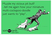 "Pit Bulls / Be a PIT BULLIEVER! Know the difference between aggression and play behavior, educate yourself on dog behavior before you judge JUDGE THE DEED NOT THE BREED! End BSL! Treat every dog the same, what's ""cute"" on a yorkie, May not be ""cute"" on a Pit, just cause it's little doesn't mean it's okay!"