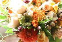 Orange / A collection of inspiring arrangements in an orange color scheme