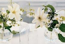 Collections  / Tablescapes and whimsical centerpieces that inspire us