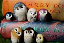 ✶ Harry Potter ✶