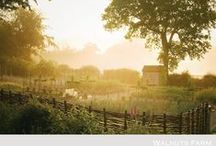 - Farm Life -