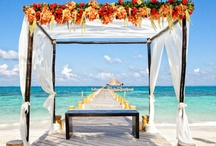 """Destination Beach Weddings / #Destination #Wedding ideas and locations for your special day in #Mexico. From #Villas to #beach weddings, we give you inspiration to say """"I Do!"""" South of the Border."""