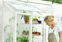 Garden, Greenhouse and Potting Benches / by Mary BB