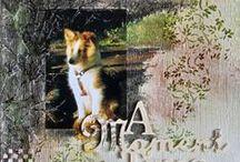 Scrapbook Pets & Shelties / Ein Leben ohne Hund ist möglich, aber sinnlos ;-)