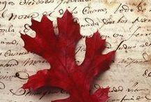 Autumn i love you
