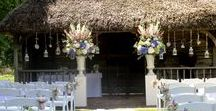 Summer Weddings at Great Fosters / Summer weddings at Great Fosters, Egham
