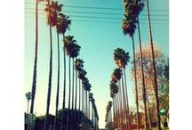 SoCal <3 / by Pacific Edge Hotel