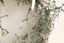 Wreaths / ideas for wreaths of all seasons