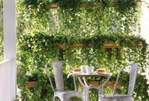 Outdoor Living / From fun and funky to sophisticated, we love outdoor living in Durham, NC.