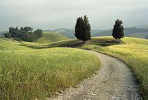 PHOTO / Landscape