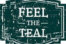 Teal Time / by Sammy C Hawk
