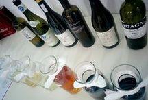 AccademiaVino Degustazioni / Degustazioni a tema: ogni sera si assaggiano sei vini che possono provenire da una specifica regione italiana, che possono essere l'espressione di un singolo vitigno nelle diverse regioni viticole del mondo. Si approfondiscono le differenze nella produzione di vini biologici, biodinamici e naturali