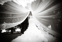 Love & Marriage! / by Jessica Trujillo