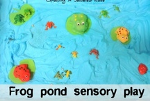 FDK science and sensory ideas