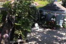 Mill Rose Inn Videos / Videos about the inn and Half Moon Bay, CA.