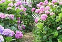 Le Jardin / Beautiful garden ideas...