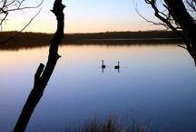 Swan Lake / Some photos taken on holidays Easter 2014