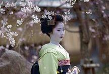 giardini giapponesi... japanese garden