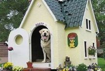 The Dog House / Dog Houses are getting more creative and more lavish every single year. Remember when they were just made of wood? Check out these lavish dog pads!