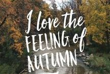 Getting Ready for Autumn