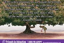 Adoption Quotes / Great Quotes written about Adoption, Open Adoption, Birth Mothers, Birth Parents, and more.
