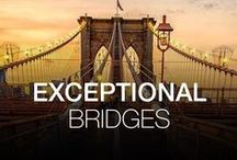 EXCEPTIONAL BRIDGES