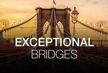 EXCEPTIONAL BRIDGES