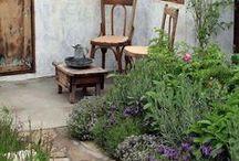 Herb gardens / herb garden's