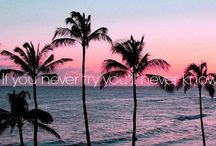 quotes / coole quotes