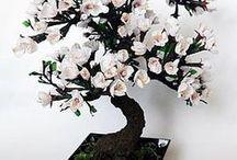 bonsay porcelana