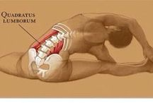Low Back, Hips, Knee's & Feet / Flexibility is key to keeping your body healthy and pain free!