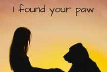Dogs / Facts, quotes, pictures, information all relating to mans best friend.