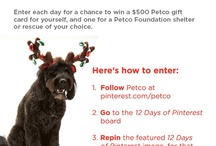 Petco for you and for them