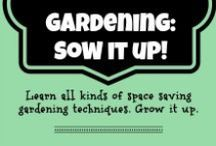 Gardening | Sow It Up! / We love Vertical Gardening. Finding ways to expand our growing area by growing your plants on trellises, tepees and ladders.