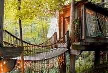 Living || Treehouses