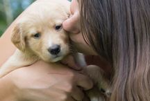 My Puppy, Annie❤